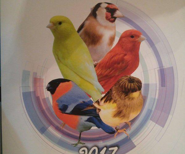 Ημερολόγιο 2017 του συλλόγου